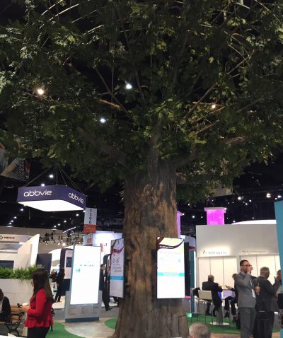 Tree at ACR 17